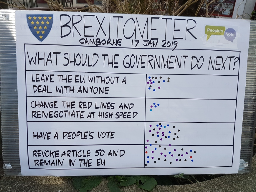 Brexitometer Camborne 17 January 2019